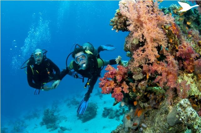 UNWTO and ATTA release global report on adventure tourism