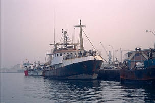 International Court : vessels fishing illegal in foreign waters