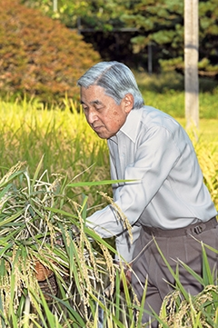 Japan celebrates National Day and 82nd birthday of Emperor Akihito