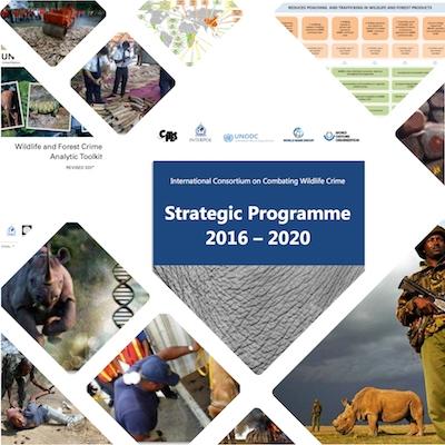 Wildlife Consortium launches new programme